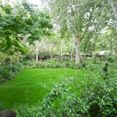 Manacured-garden-and-trees-on-a-yearly-basis